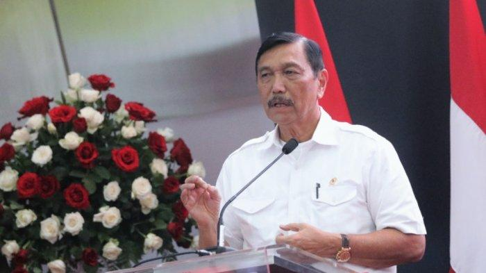 Menteri Luhut Izinkan Pemerintah Singapura Usut Kebakaran Hutan yang Libatkan WNI